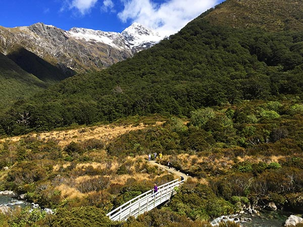 Walking track and snowy mountain in Arthur's Pass National Park