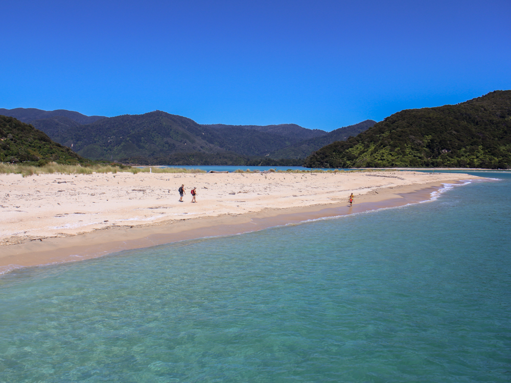 Golden sand and crystal clear water of Abel Tasman National Park
