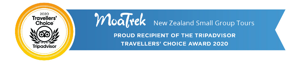 MoaTrek New Zealand Small Group Tours are proud recipients of the Tripadvisor Traveller's Choice Award 2020