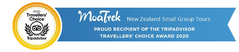 MoaTrek New Zealand Small Group Tours are proud recipients of the Tripadvisor Travellers' Choice Award 2020