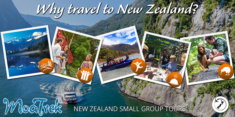 Why travel New Zealand in pictures