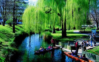 Punting on the beautiful Avon River in Christchurch