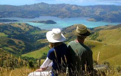 Views of Akaroa Harbour - Akaroa Day Tour