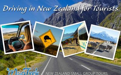 New Zealand Driving Images - Driving in New Zealand for Tourists