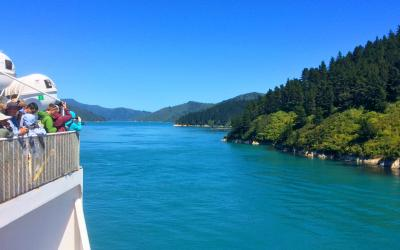 MoaTrek Interislander Ferry Queen Charlotte Sound