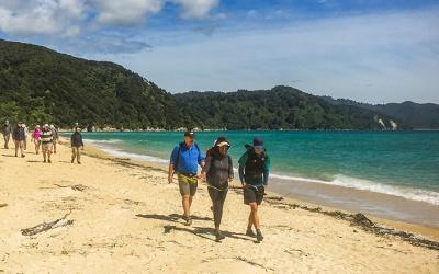 Walking on the beach at Abel Tasman National Park