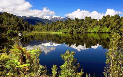 Mountain reflections in Lake Matheson - NZ South Island Tour