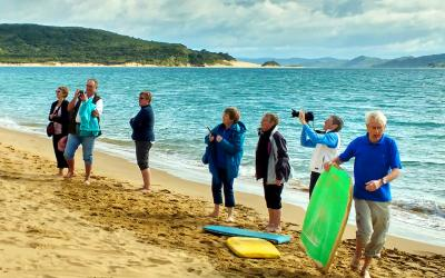 Watching sandboarding in the Hokianga Harbour
