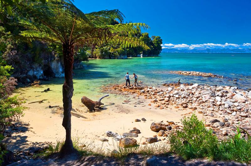 Walking in coastal Abel Tasman - Short walks around NZ