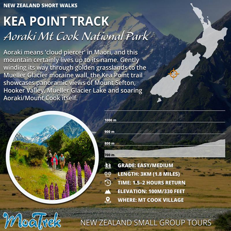 Kea Point Mt Cook Short Walk Infographic