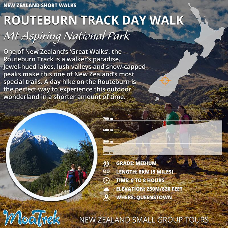 Routeburn Track Day Walk Infographic
