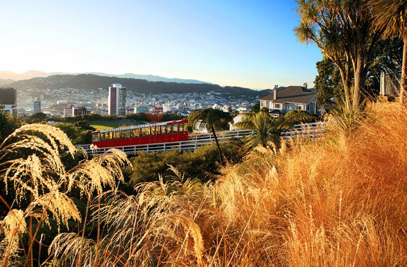 Wellington Cable Car and City Views