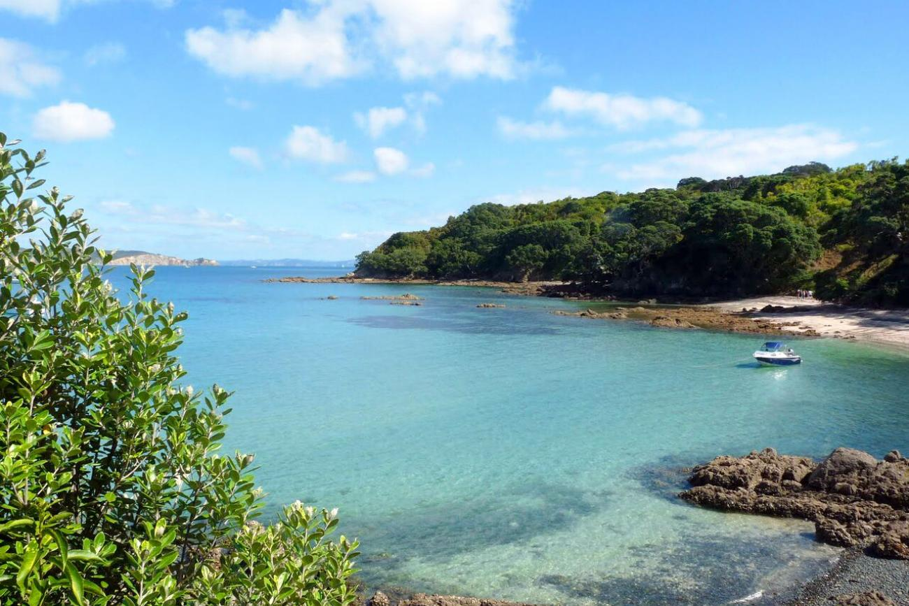 Tiritiri Matangi Island, beautiful bay and beach in the sunny day