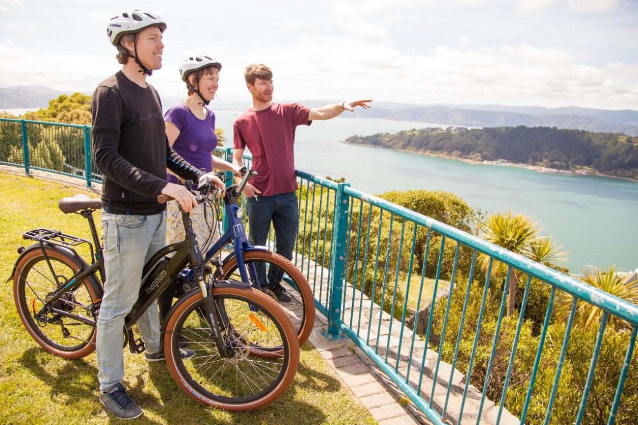 Guided Electric Bike Tour of Wellington