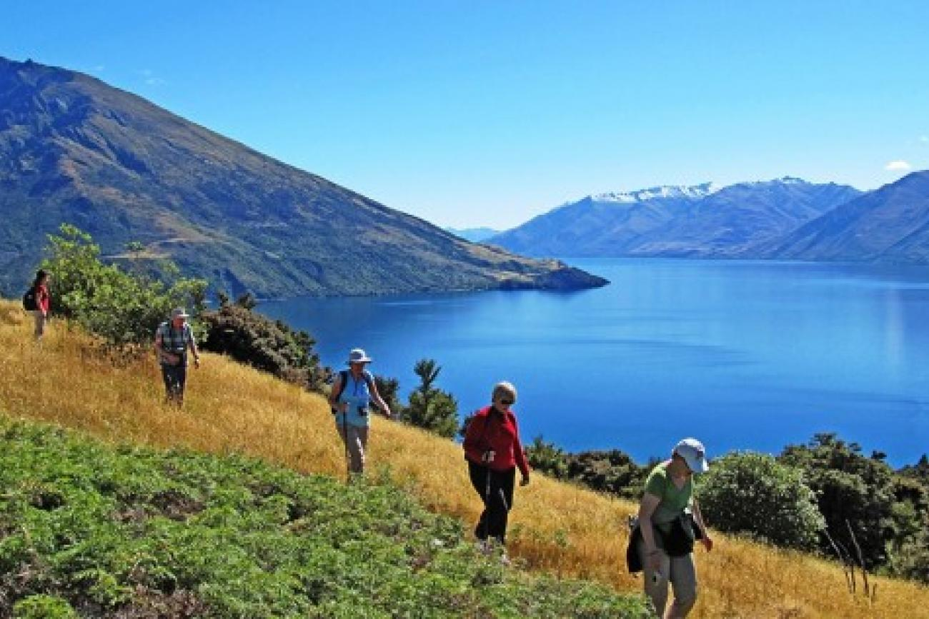 Wanaka cruise and Mou Waho Island walk