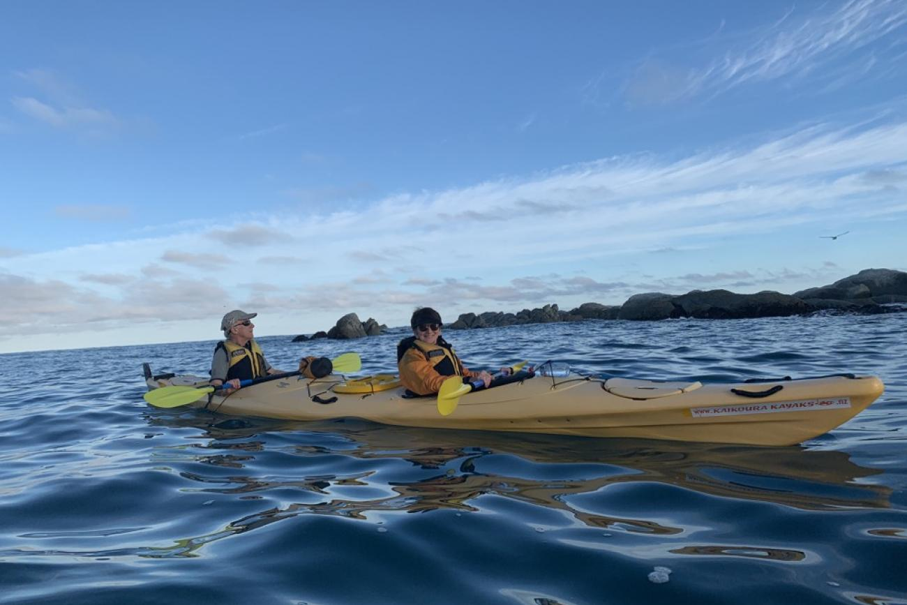 Sea Kayak in Kaikoura