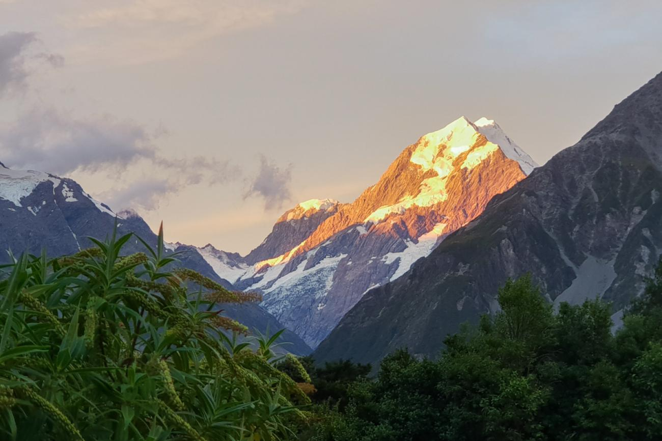 Sunset on Mt Cook