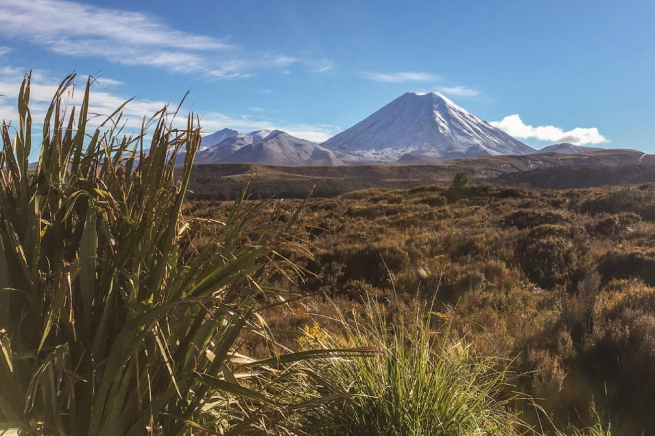 Mt Ngauruhoe is Mt Doom