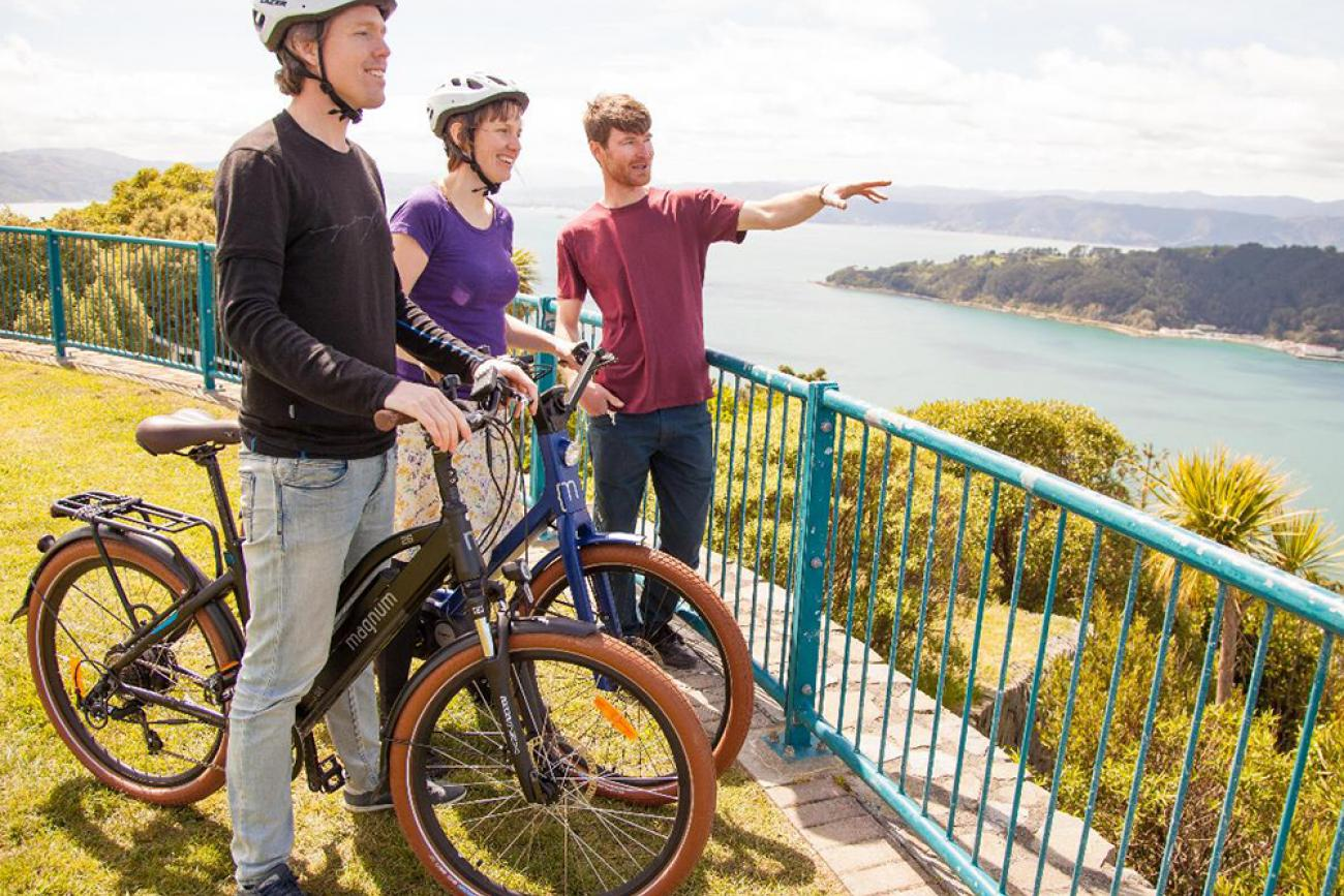 Wellington by E-Bike