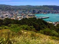 Views of Wellington habour from Mt Victoria - MoaTrek Tour Gallery Dec 2016