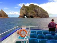 Cruising to the 'Hole in the Rock - Bay of Islands with MoaTrek