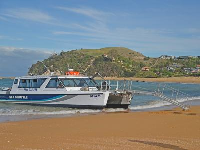 Small Group New Zealand Tours Abel Tasman