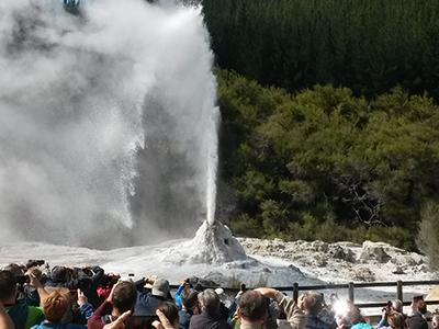 Small Group New Zealand Tours Geyser