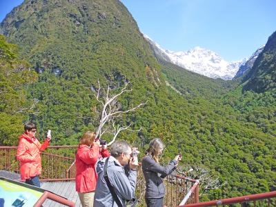 Small Group New Zealand Tours Photo Stop