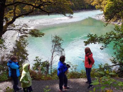 The Blue Pools of Haast MoaTrek Tour Gallery