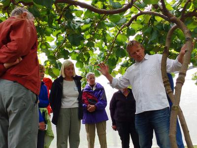 Learning all about Kiwifruit - MoaTrek Tour Gallery