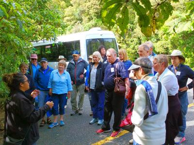 Meeting our Maori guides at Tane Mahuta - MoaTrek Tour Gallery