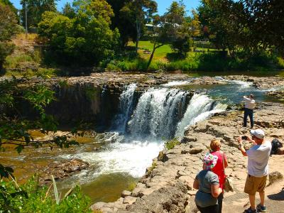 Photos at Haruru Falls Northland - MoaTrek Tour Gallery