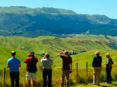 New Zealand Countryside - MoaTrek Tour Gallery
