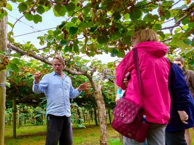 Learning about Kiwifruit - MoaTrek Tour Gallery