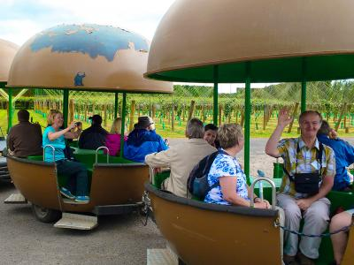Riding the Kiwifruit Train - MoaTrek Tour Gallery
