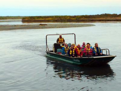 Wildlife Cruise Okarito Lagoon - MoaTrek Tour Gallery