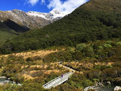 Walking track at Arthurs Pass - MoaTrek Tour Gallery February 2017