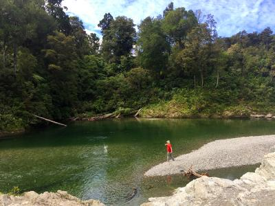 Skimming stones at the Pelorus River - MoaTrek Tour Gallery February 2017