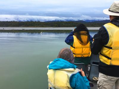 Boat Cruise Okarito, Southern Alps, West Coast- MoaTrek Tour Gallery