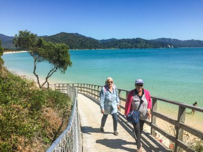 Crystal clear water at the beach in the Abel Tasman national park
