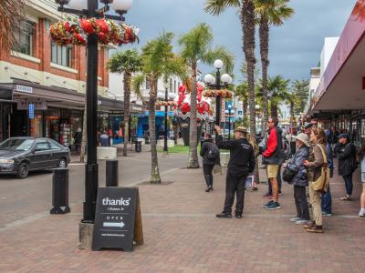 Guided city tour in Napier