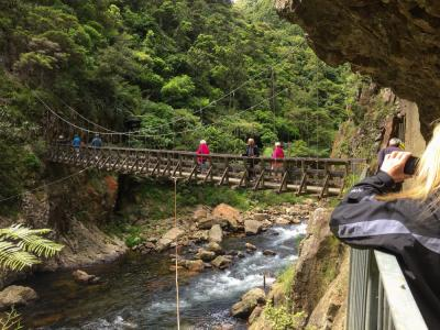 MoaTrek Karangahake Gorge Swing Bridge