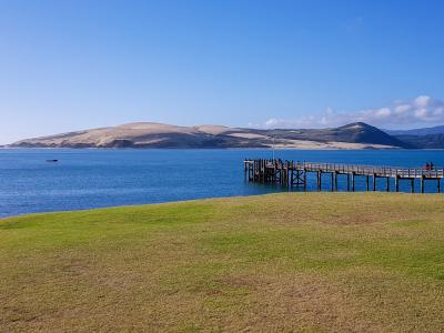 A 'mint' day in the mighty Hokianga