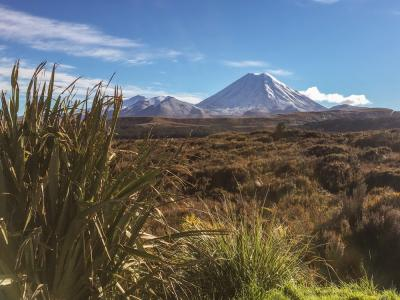 Mount Ngauruhoe in Springtime Snow