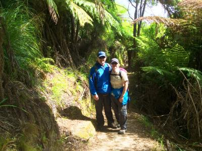 Walkers in the forest on the Abel Tasman Track