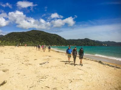 Walking on the Golden Sands of Abel Tasman