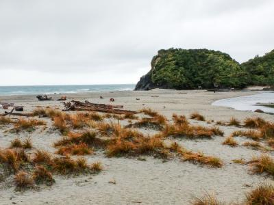 Rugged West Coast Beach at Ship Creek