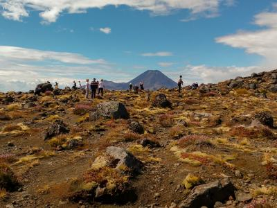 Walkers in the volcanic landscapes in Tongariro National Park