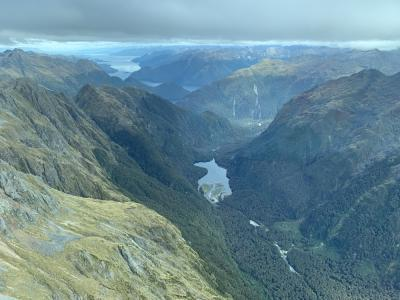 Fiordland from the air
