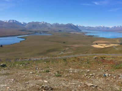 Views of Lake Tekapo from Mt John